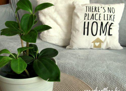 Így vidd be a természet zöldjét otthonodba